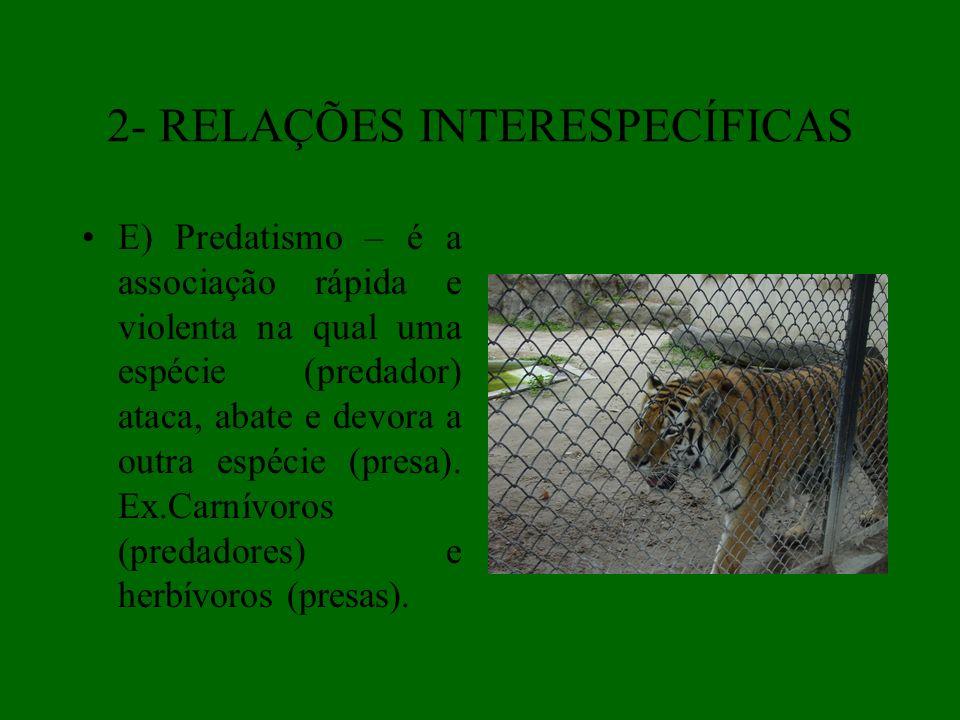 2- RELAÇÕES INTERESPECÍFICAS E) Predatismo – é a associação rápida e violenta na qual uma espécie (predador) ataca, abate e devora a outra espécie (pr