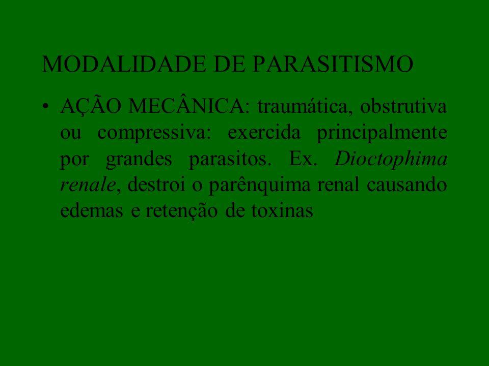 AÇÃO MECÂNICA: traumática, obstrutiva ou compressiva: exercida principalmente por grandes parasitos. Ex. Dioctophima renale, destroi o parênquima rena