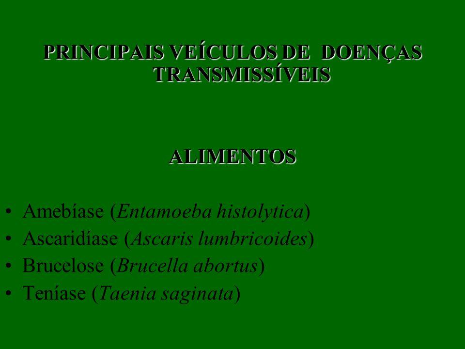 PRINCIPAIS VEÍCULOS DE DOENÇAS TRANSMISSÍVEIS ALIMENTOS Amebíase (Entamoeba histolytica) Ascaridíase (Ascaris lumbricoides) Brucelose (Brucella abortu