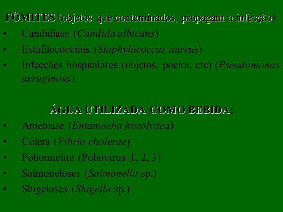 FÔMITES (objetos que contaminados, propagam a infecção FÔMITES (objetos que contaminados, propagam a infecção): Candidíase (Candida albicans) Estafilo