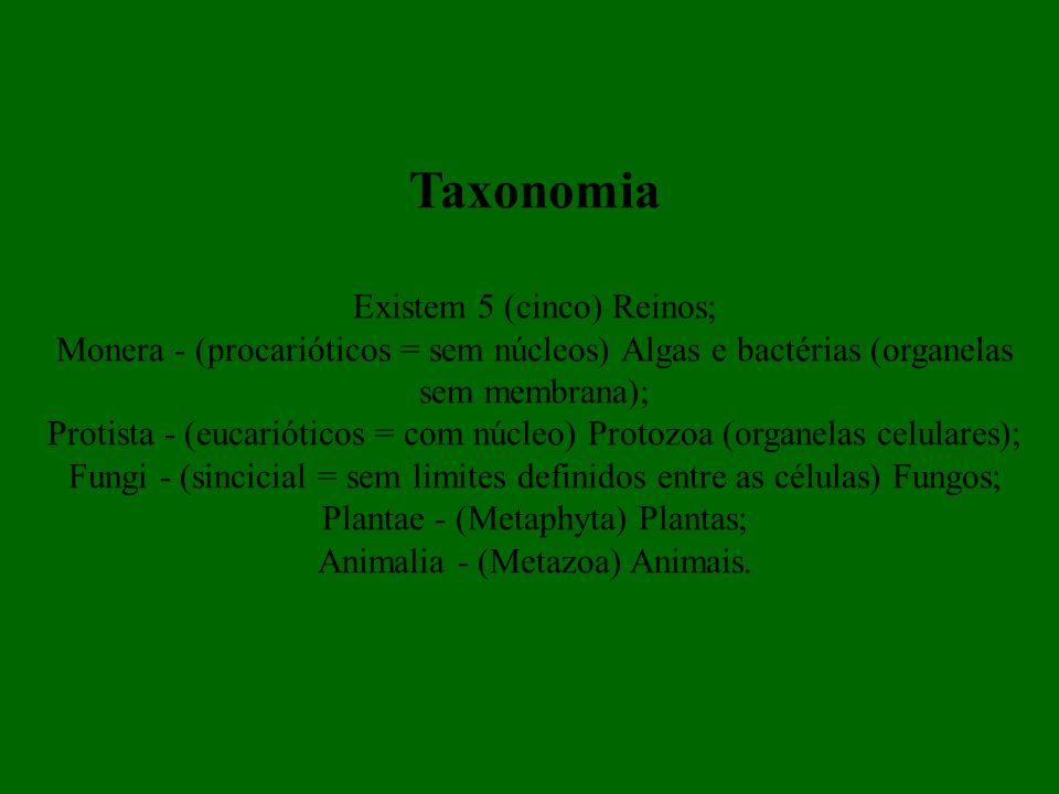 Taxonomia Existem 5 (cinco) Reinos; Monera - (procarióticos = sem núcleos) Algas e bactérias (organelas sem membrana); Protista - (eucarióticos = com