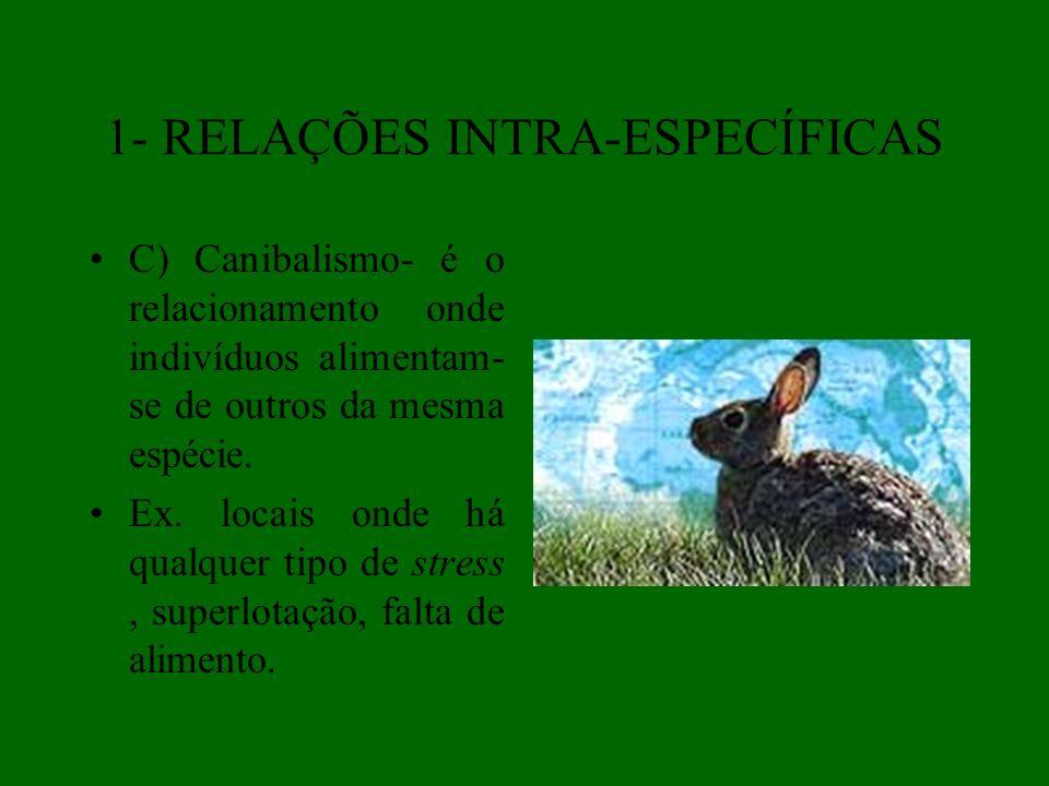 REGRAS INTERNACIONAIS DE NOMENCLATURA (LINNAEUS, 1758) NOMES VULGARES- cada país ou região tem seus próprios nomes para os animais comuns.