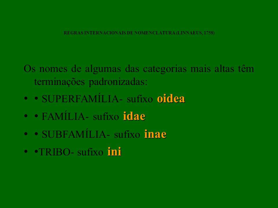 Os nomes de algumas das categorias mais altas têm terminações padronizadas: oidea SUPERFAMÍLIA- sufixo oidea idae FAMÍLIA- sufixo idae inae SUBFAMÍLIA