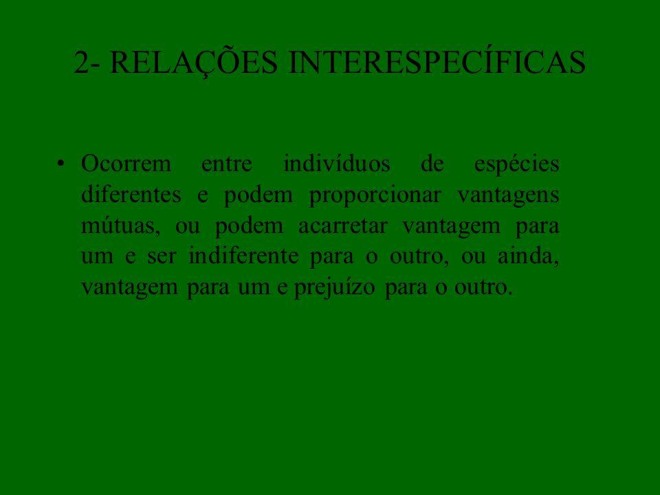 2- RELAÇÕES INTERESPECÍFICAS A) Simbiose- é o tipo de associação em que uma ou ambas as espécies beneficiam-se e na qual não ocorre prejuízo para nenhuma; (sem prejuízos)