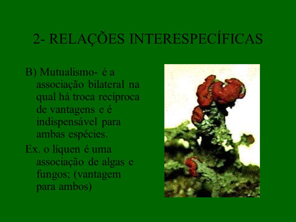 2- RELAÇÕES INTERESPECÍFICAS B) Mutualismo- é a associação bilateral na qual há troca recíproca de vantagens e é indispensável para ambas espécies. Ex