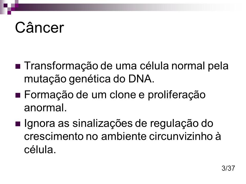 Câncer Transformação de uma célula normal pela mutação genética do DNA. Formação de um clone e proliferação anormal. Ignora as sinalizações de regulaç