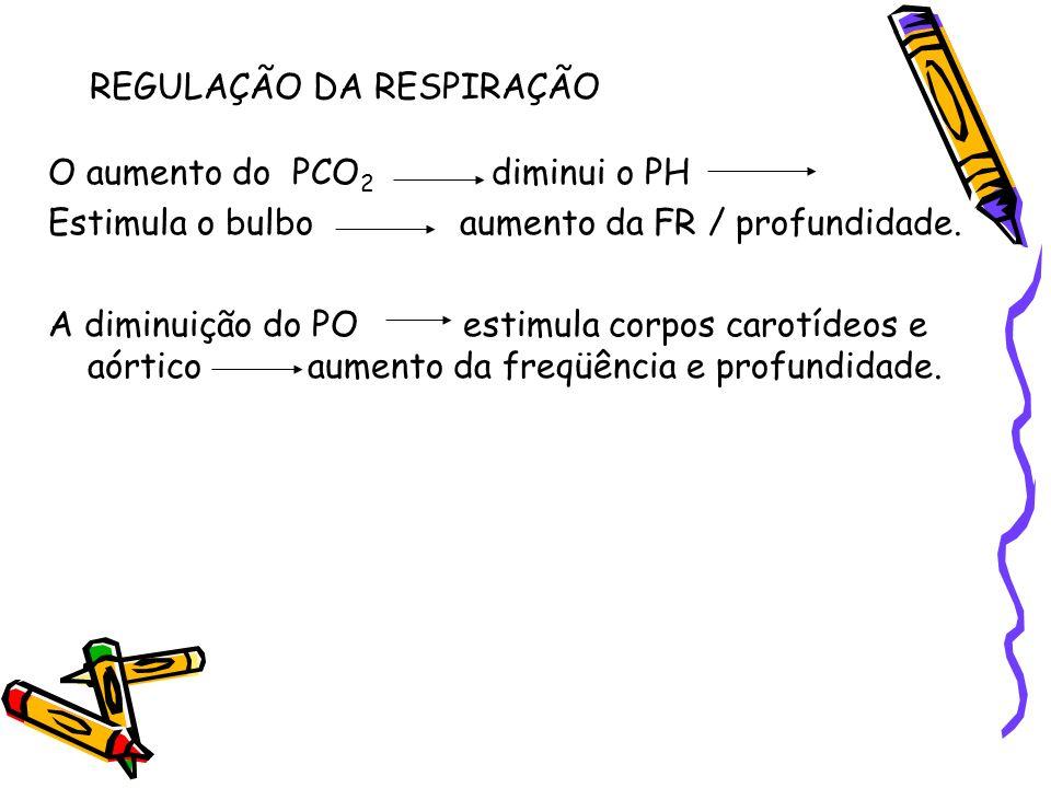 REGULAÇÃO DA RESPIRAÇÃO O aumento do PCO 2 diminui o PH Estimula o bulbo aumento da FR / profundidade. A diminuição do PO estimula corpos carotídeos e