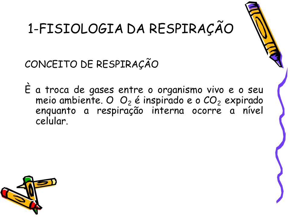 1-FISIOLOGIA DA RESPIRAÇÃO CONCEITO DE RESPIRAÇÃO È a troca de gases entre o organismo vivo e o seu meio ambiente. O O 2 é inspirado e o CO 2 expirado