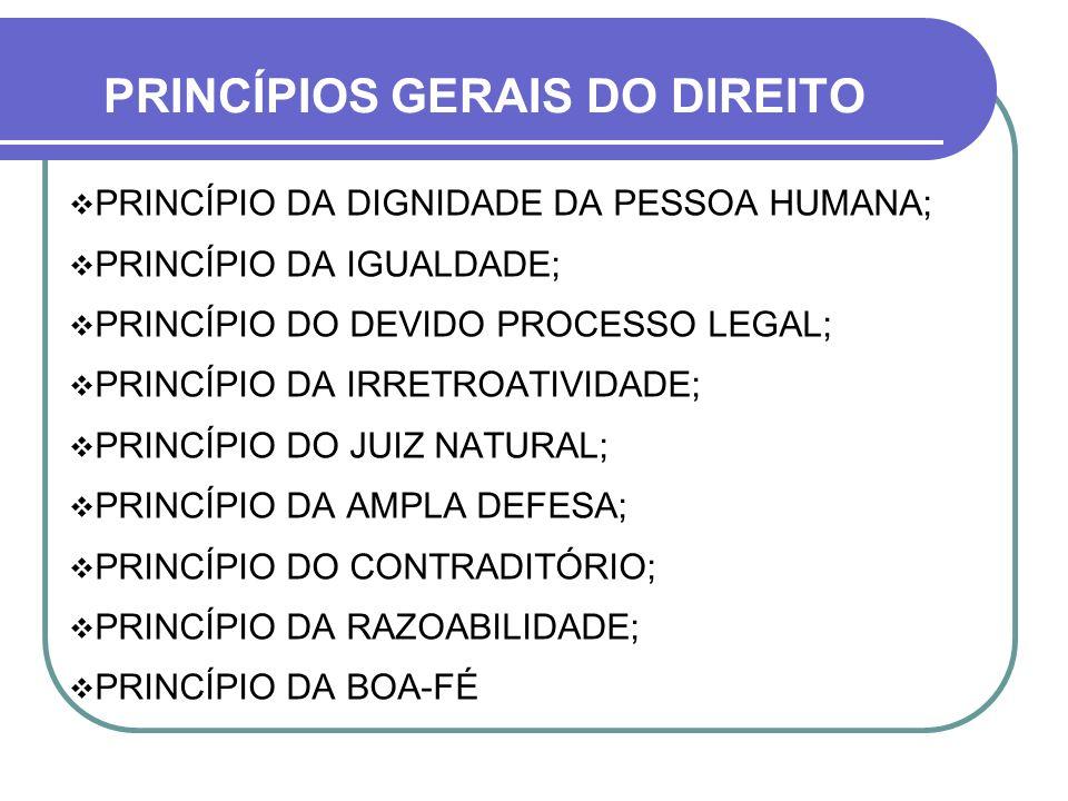 PRINCÍPIOS GERAIS DO DIREITO PRINCÍPIO DA DIGNIDADE DA PESSOA HUMANA; PRINCÍPIO DA IGUALDADE; PRINCÍPIO DO DEVIDO PROCESSO LEGAL; PRINCÍPIO DA IRRETRO