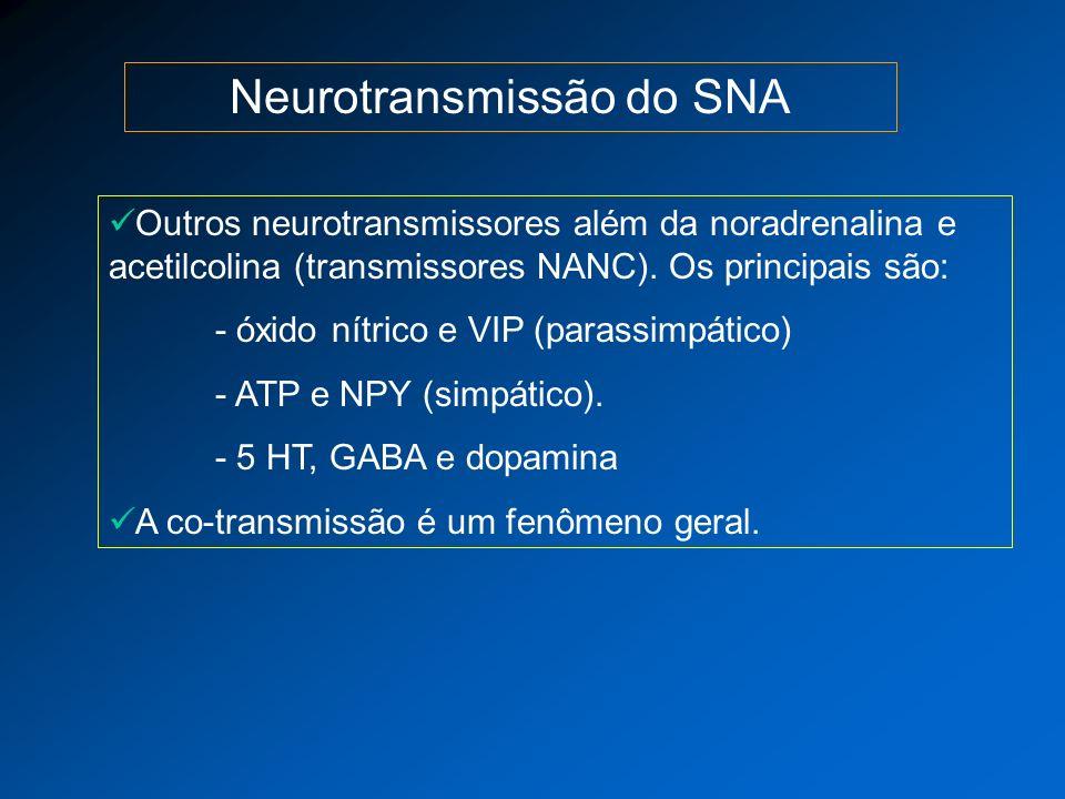 Neurotransmissão do SNA Outros neurotransmissores além da noradrenalina e acetilcolina (transmissores NANC). Os principais são: - óxido nítrico e VIP