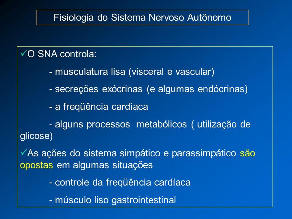 Fisiologia do Sistema Nervoso Autônomo O SNA controla: - musculatura lisa (visceral e vascular) - secreções exócrinas (e algumas endócrinas) - a freqü
