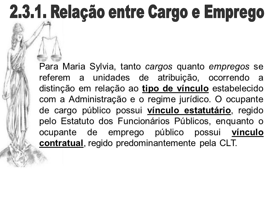 Para Maria Sylvia, tanto cargos quanto empregos se referem a unidades de atribuição, ocorrendo a distinção em relação ao tipo de vínculo estabelecido