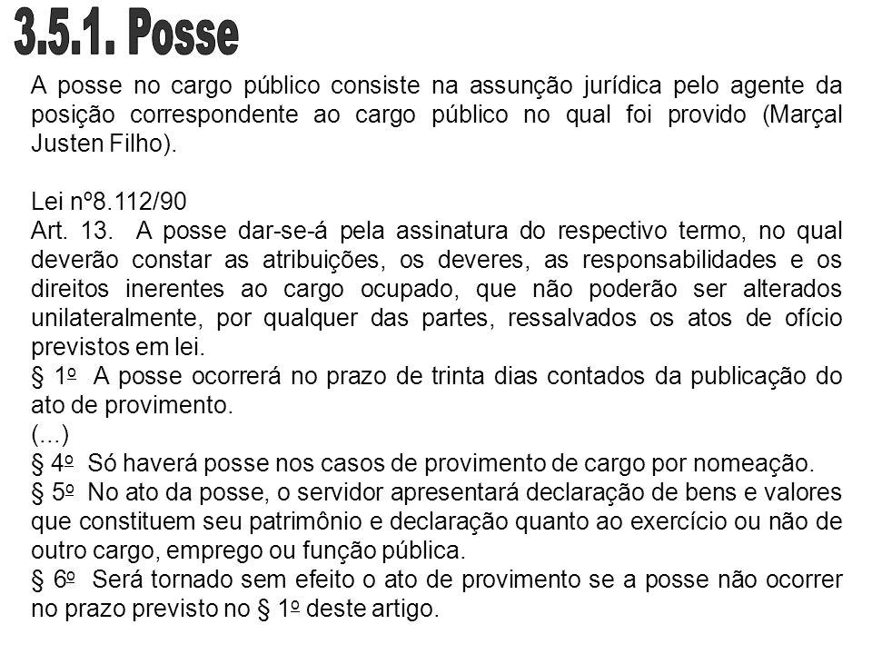 A posse no cargo público consiste na assunção jurídica pelo agente da posição correspondente ao cargo público no qual foi provido (Marçal Justen Filho