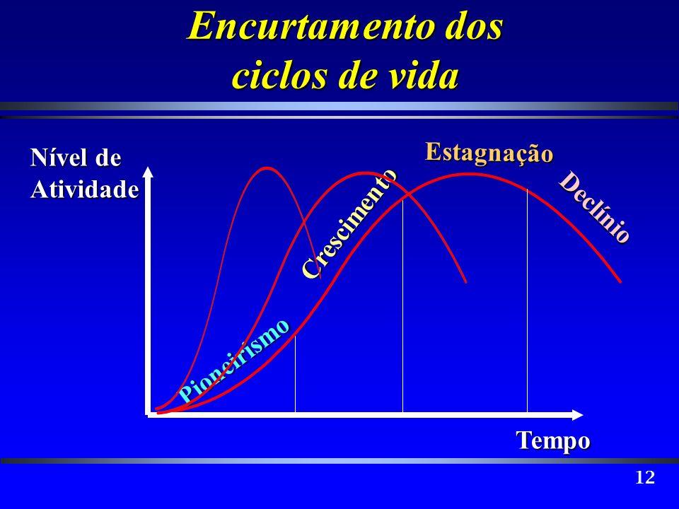 12 Encurtamento dos ciclos de vida Declínio Pioneirismo Crescimento Estagnação Tempo Nível de Atividade