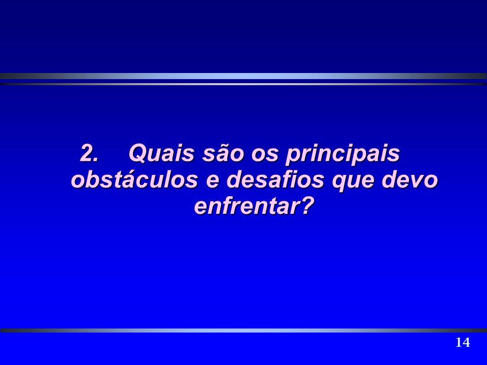 14 2.Quais são os principais obstáculos e desafios que devo enfrentar?