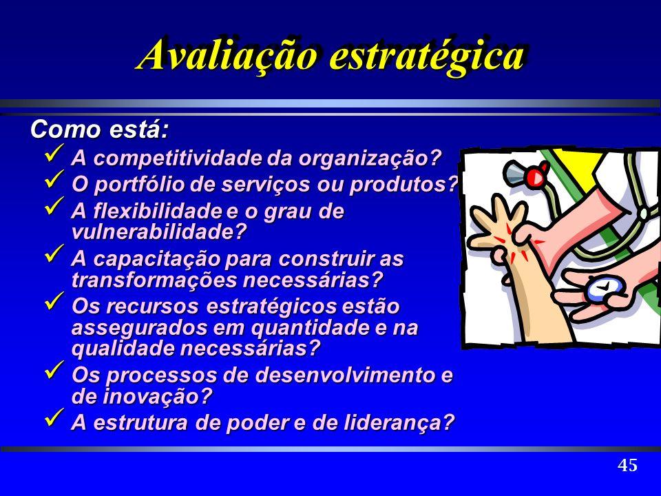 45 Avaliação estratégica Como está: A competitividade da organização? A competitividade da organização? O portfólio de serviços ou produtos? O portfól
