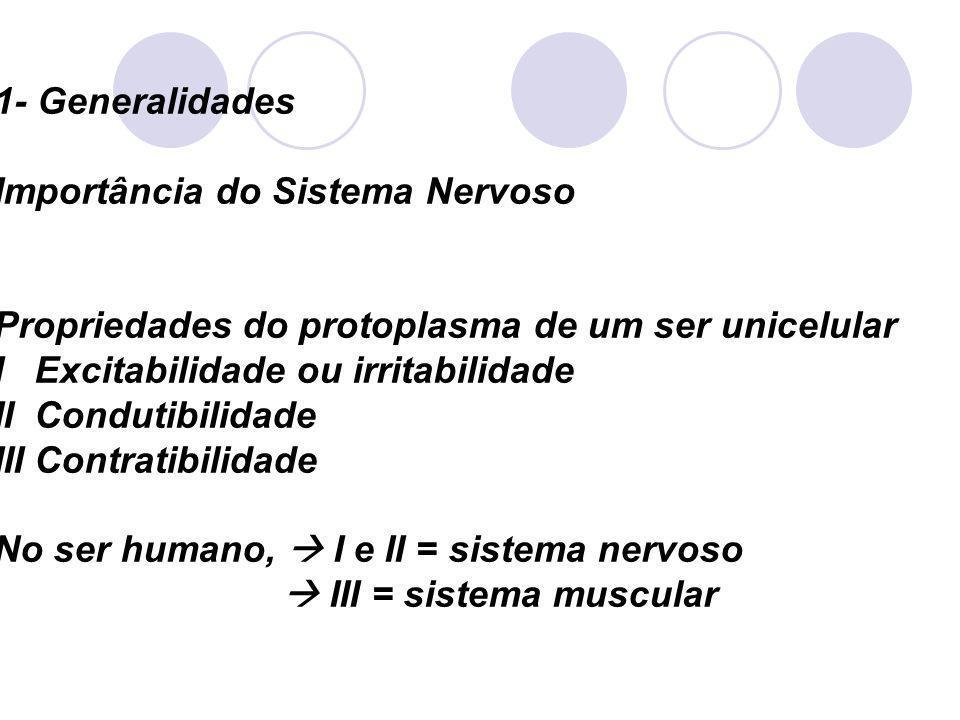 1- Generalidades Importância do Sistema Nervoso Propriedades do protoplasma de um ser unicelular I Excitabilidade ou irritabilidade II Condutibilidade III Contratibilidade No ser humano, I e II = sistema nervoso III = sistema muscular