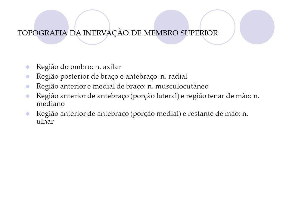 TOPOGRAFIA DA INERVAÇÃO DE MEMBRO SUPERIOR Região do ombro: n.