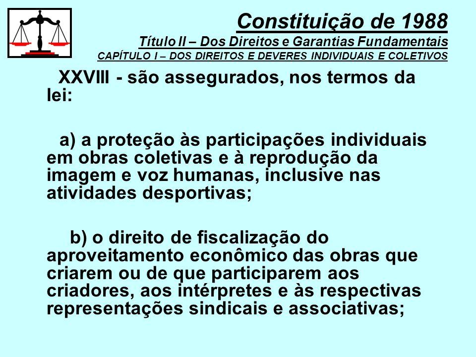 XXVIII - são assegurados, nos termos da lei: a) a proteção às participações individuais em obras coletivas e à reprodução da imagem e voz humanas, inc