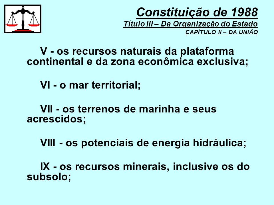 V - os recursos naturais da plataforma continental e da zona econômica exclusiva; VI - o mar territorial; VII - os terrenos de marinha e seus acrescid