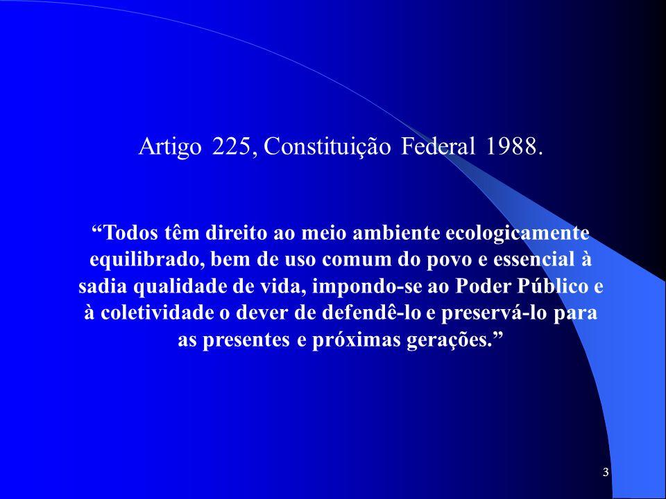 3 Artigo 225, Constituição Federal 1988. Todos têm direito ao meio ambiente ecologicamente equilibrado, bem de uso comum do povo e essencial à sadia q