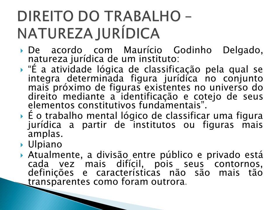 De acordo com Maurício Godinho Delgado, natureza jurídica de um instituto: É a atividade lógica de classificação pela qual se integra determinada figu