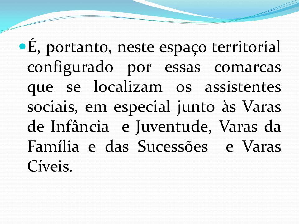 É, portanto, neste espaço territorial configurado por essas comarcas que se localizam os assistentes sociais, em especial junto às Varas de Infância e