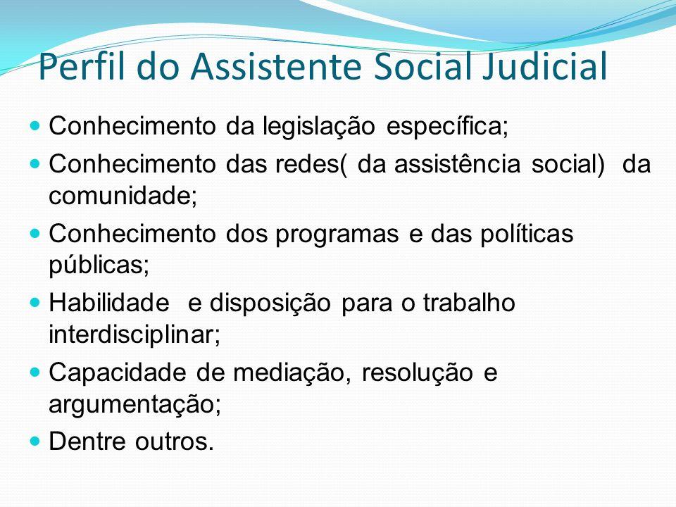 Perfil do Assistente Social Judicial Conhecimento da legislação específica; Conhecimento das redes( da assistência social) da comunidade; Conhecimento