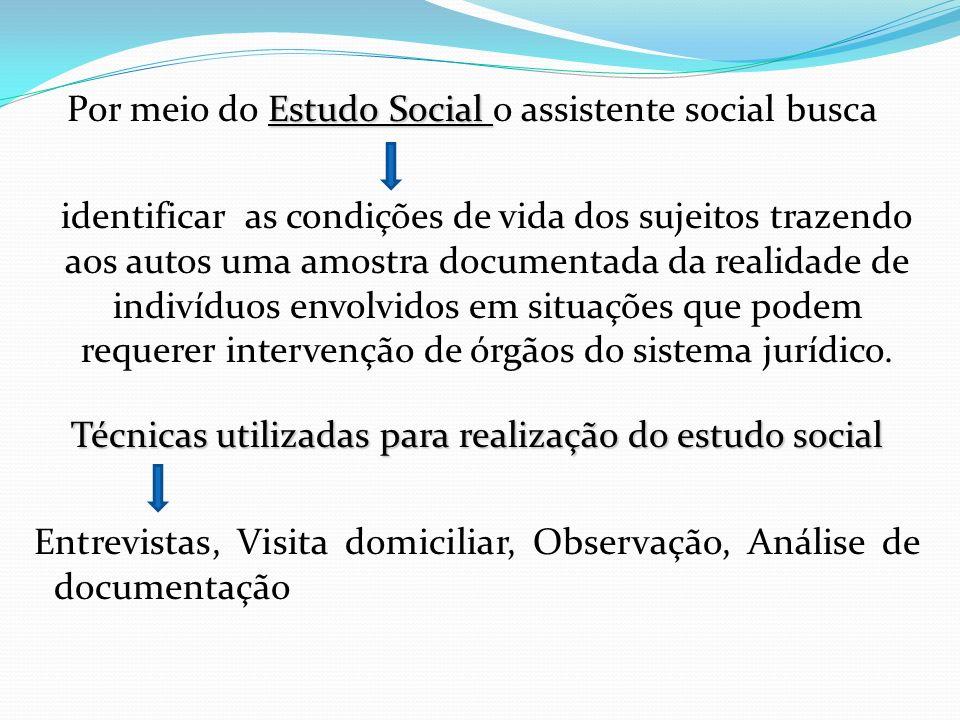 Estudo Social Por meio do Estudo Social o assistente social busca identificar as condições de vida dos sujeitos trazendo aos autos uma amostra documen