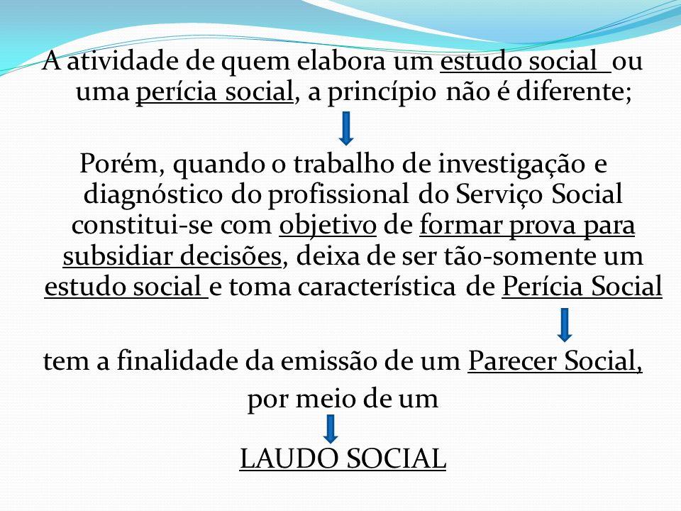 A atividade de quem elabora um estudo social ou uma perícia social, a princípio não é diferente; Porém, quando o trabalho de investigação e diagnóstic
