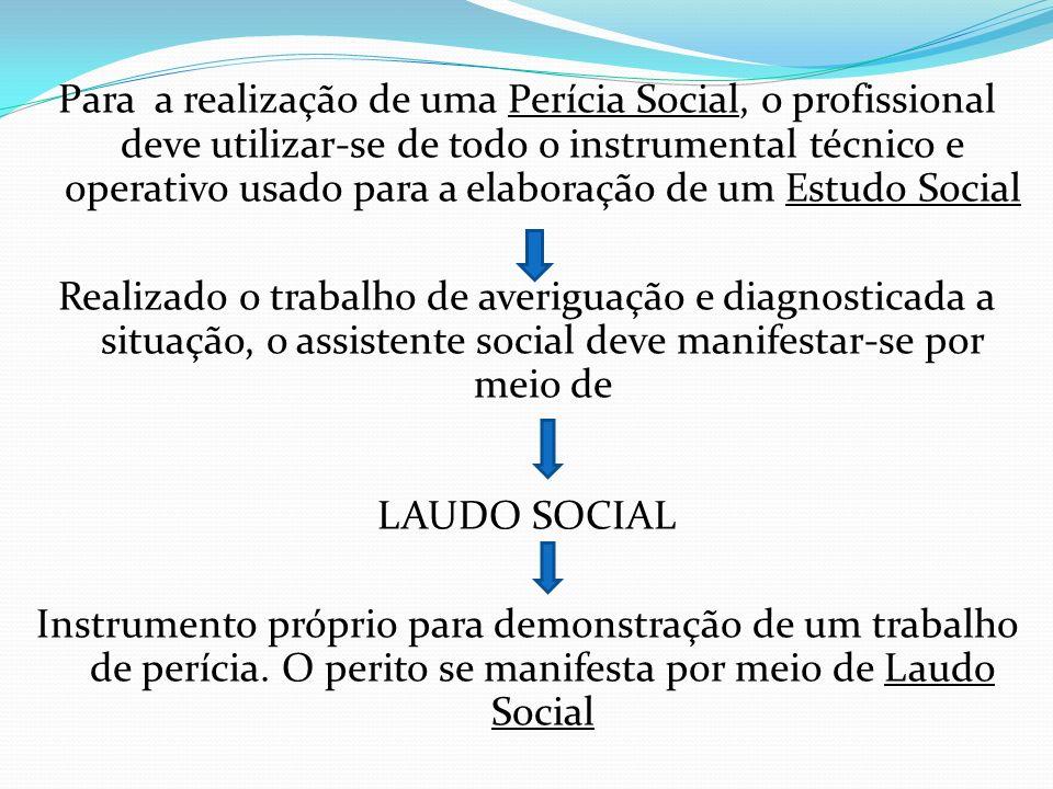 Para a realização de uma Perícia Social, o profissional deve utilizar-se de todo o instrumental técnico e operativo usado para a elaboração de um Estu