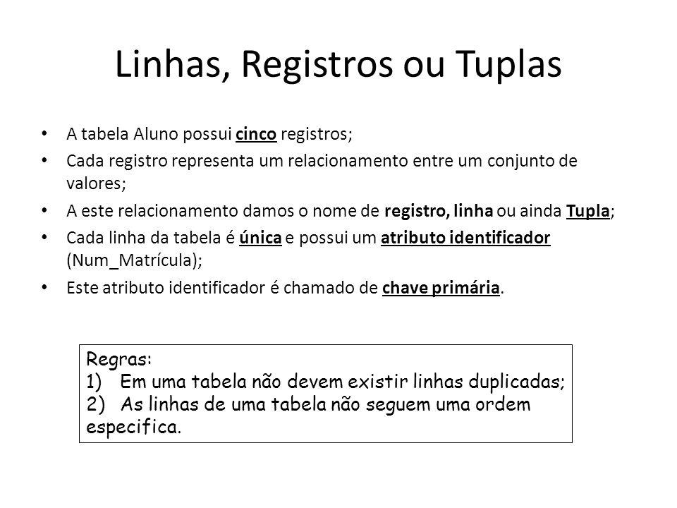 Linhas, Registros ou Tuplas A tabela Aluno possui cinco registros; Cada registro representa um relacionamento entre um conjunto de valores; A este rel