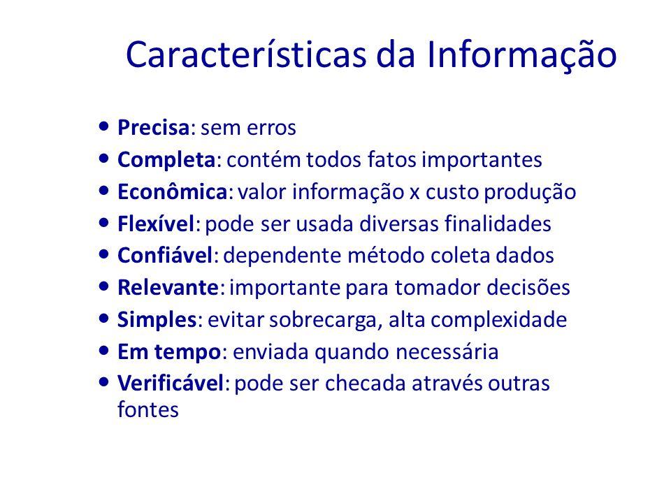 Características da Informação Precisa: sem erros Completa: contém todos fatos importantes Econômica: valor informação x custo produção Flexível: pode