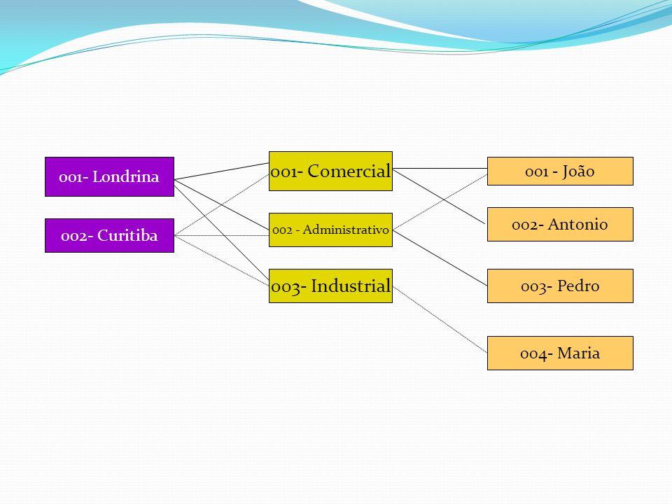 001- Londrina 002- Curitiba 002 - Administrativo 003- Industrial 001- Comercial 001 - João 002- Antonio 003- Pedro 004- Maria