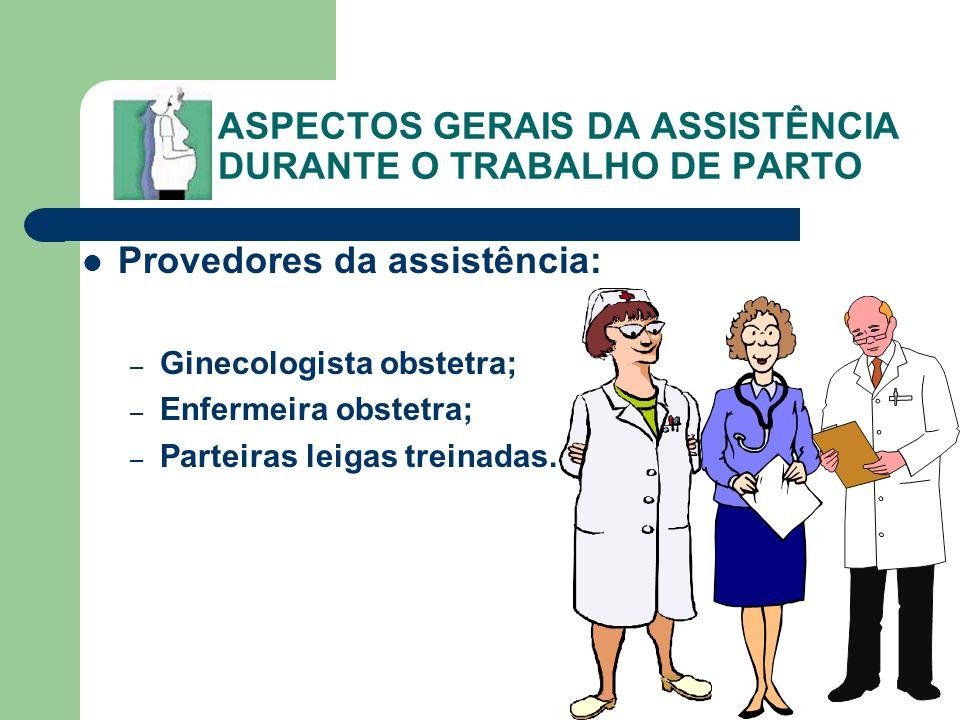 ASPECTOS GERAIS DA ASSISTÊNCIA DURANTE O TRABALHO DE PARTO Provedores da assistência: – Ginecologista obstetra; – Enfermeira obstetra; – Parteiras lei