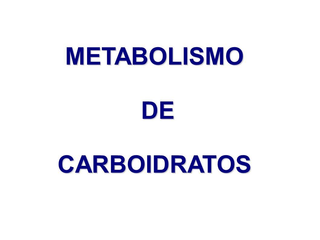 METABOLISMO DE DE CARBOIDRATOS
