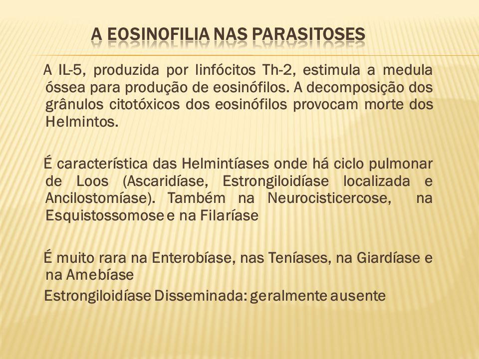 A IL-5, produzida por linfócitos Th-2, estimula a medula óssea para produção de eosinófilos. A decomposição dos grânulos citotóxicos dos eosinófilos p