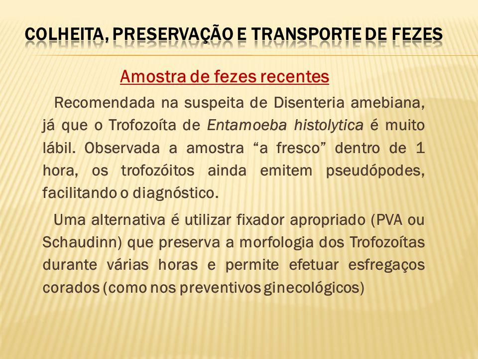 Amostra de fezes recentes Recomendada na suspeita de Disenteria amebiana, já que o Trofozoíta de Entamoeba histolytica é muito lábil. Observada a amos