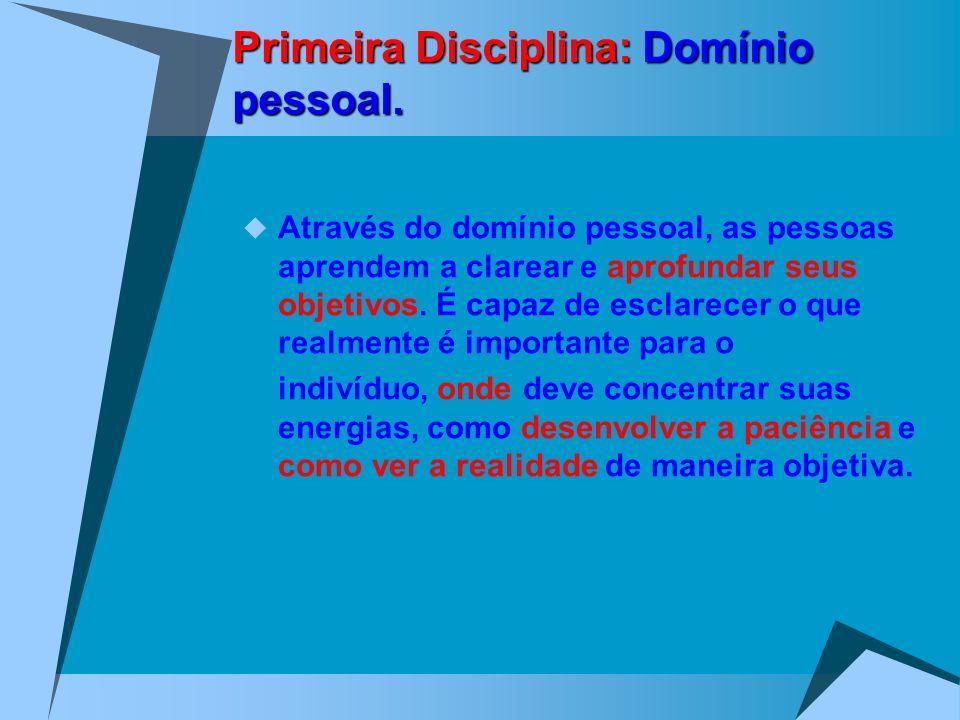 Primeira Disciplina: Domínio pessoal. Através do domínio pessoal, as pessoas aprendem a clarear e aprofundar seus objetivos. É capaz de esclarecer o q