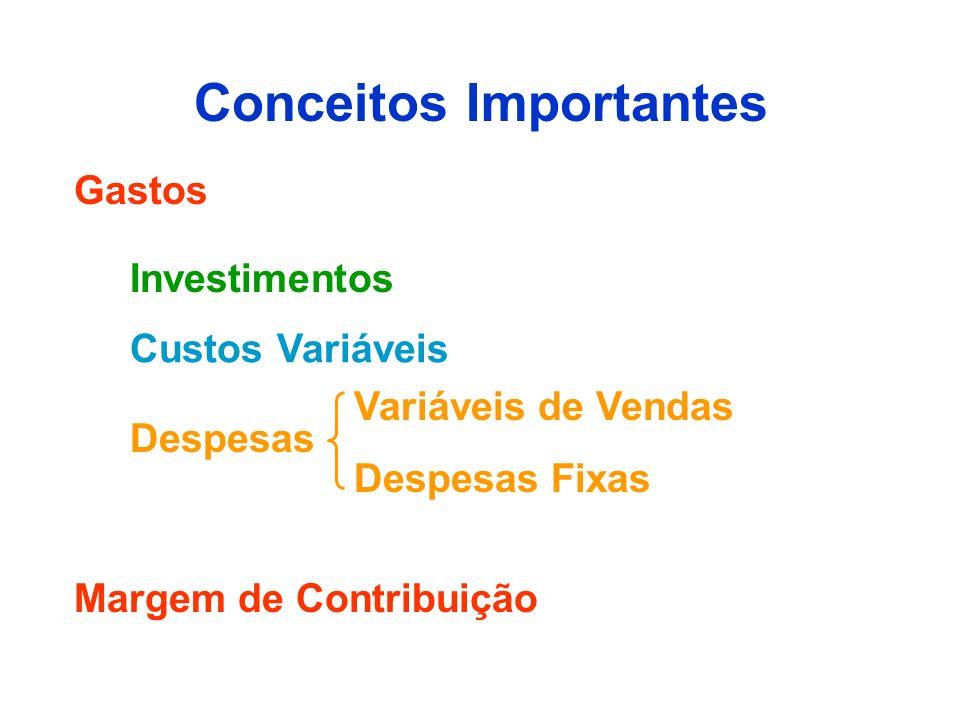 Conceitos Importantes Gastos Despesas Custos Variáveis Investimentos Despesas Fixas Variáveis de Vendas Margem de Contribuição