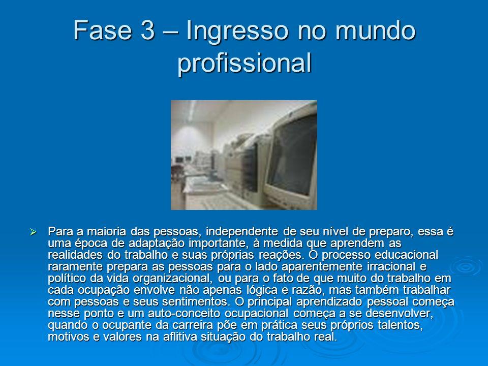 Fase 3 – Ingresso no mundo profissional Para a maioria das pessoas, independente de seu nível de preparo, essa é uma época de adaptação importante, à