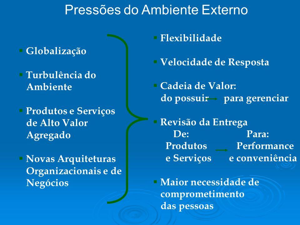 Pressões do Ambiente Externo Globalização Turbulência do Ambiente Produtos e Serviços de Alto Valor Agregado Novas Arquiteturas Organizacionais e de N