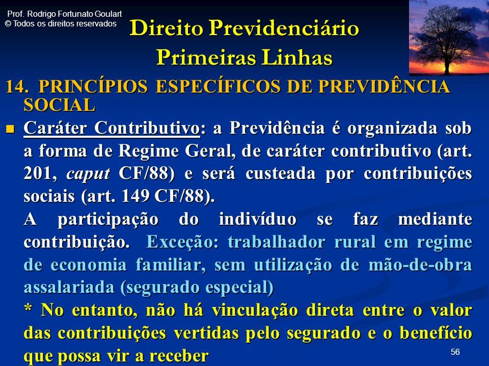 Direito Previdenciário Primeiras Linhas 14. PRINCÍPIOS ESPECÍFICOS DE PREVIDÊNCIA SOCIAL Caráter Contributivo: a Previdência é organizada sob a forma