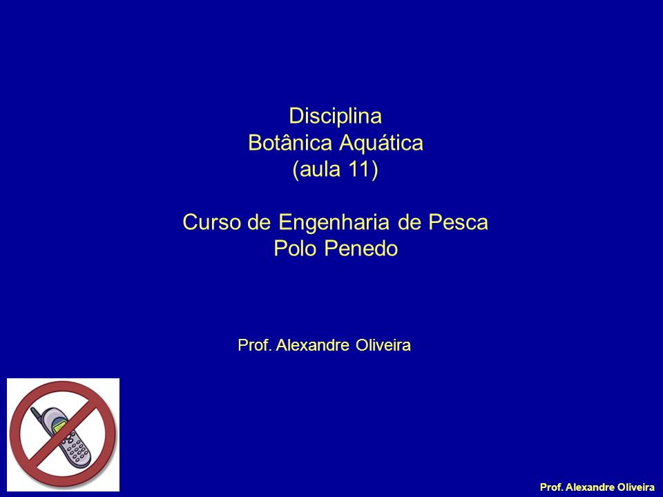 Prof. Alexandre Oliveira Disciplina Botânica Aquática (aula 11) Curso de Engenharia de Pesca Polo Penedo Prof. Alexandre Oliveira