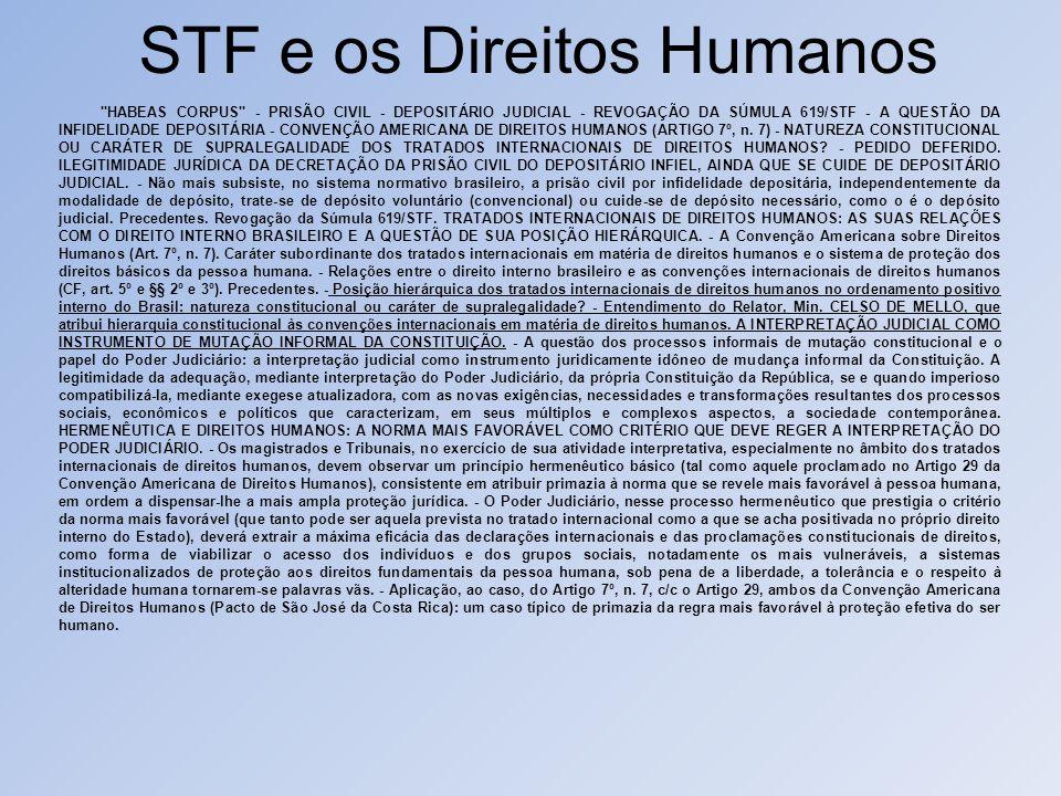 STF e os Direitos Humanos