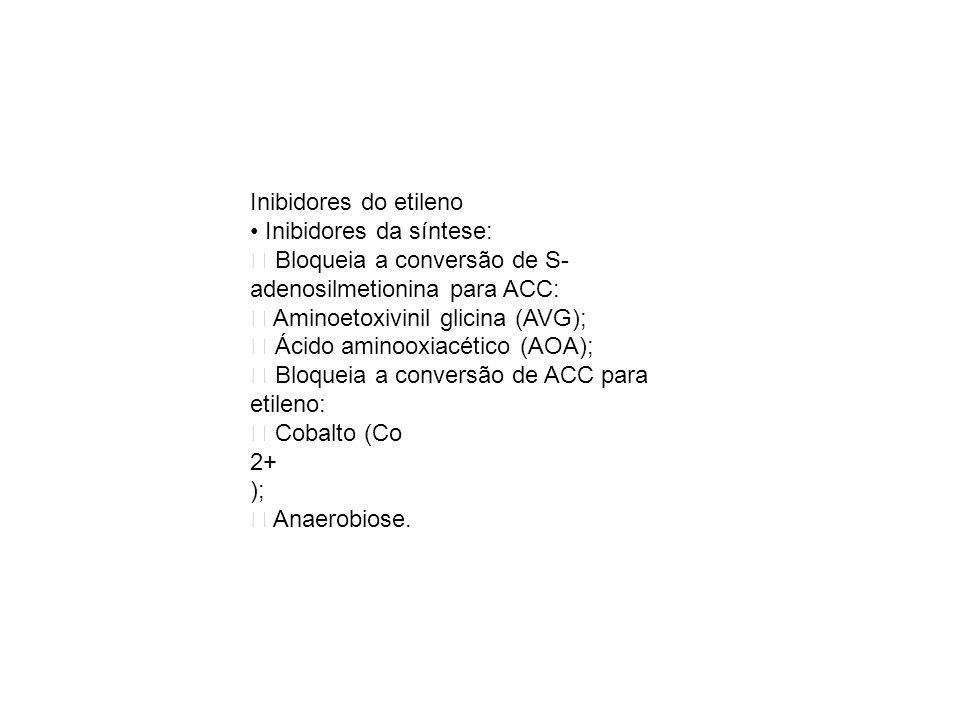 Inibidores do etileno Inibidores da síntese: Bloqueia a conversão de S- adenosilmetionina para ACC: Aminoetoxivinil glicina (AVG); Ácido aminooxiacéti