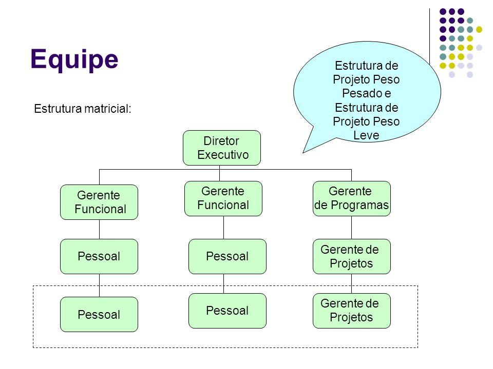 Equipe Diretor Executivo Gerente de Programas Gerente Funcional Gerente Funcional Pessoal Gerente de Projetos Gerente de Projetos Estrutura matricial: