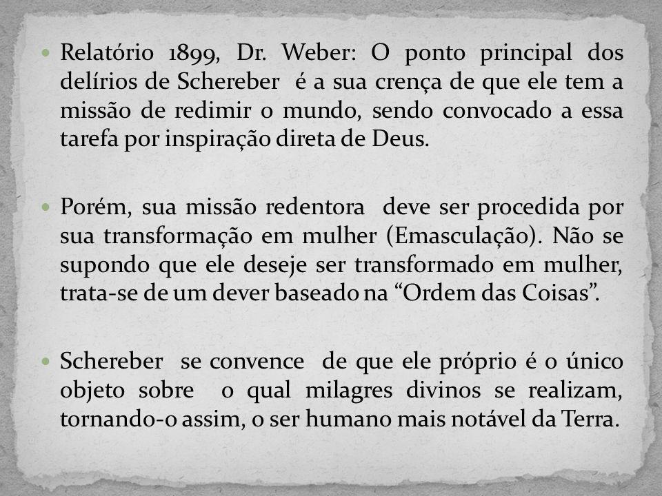 Relatório 1899, Dr. Weber: O ponto principal dos delírios de Schereber é a sua crença de que ele tem a missão de redimir o mundo, sendo convocado a es
