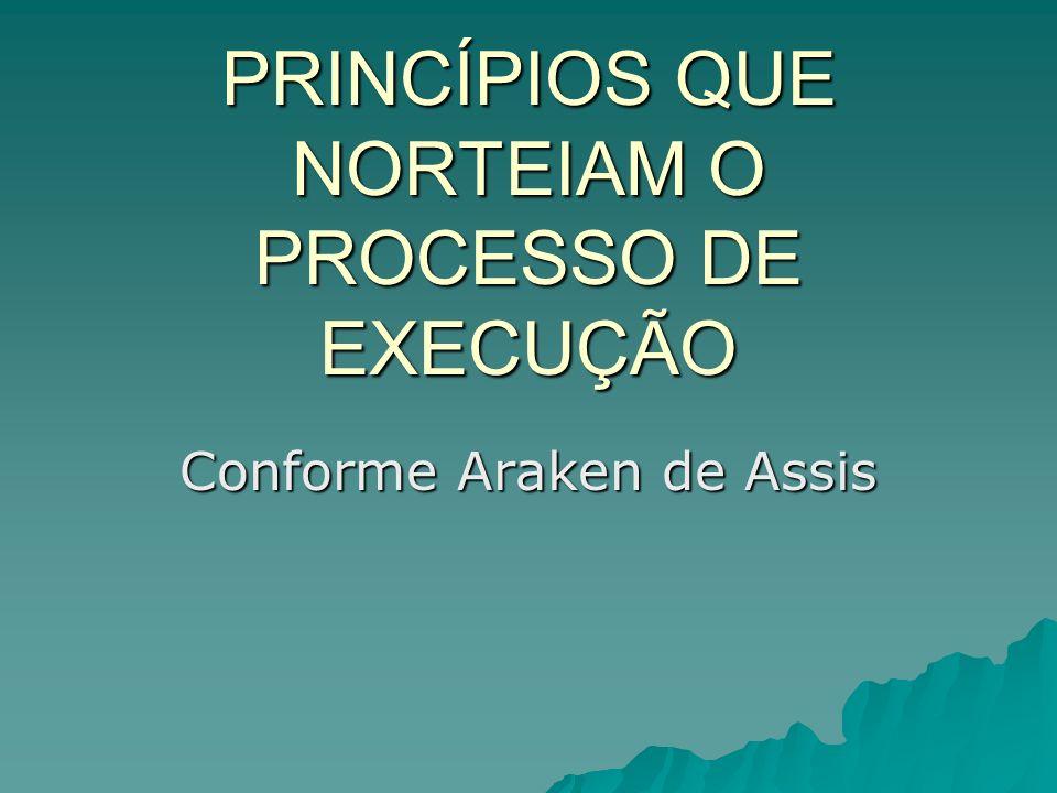 PRINCÍPIOS QUE NORTEIAM O PROCESSO DE EXECUÇÃO Conforme Araken de Assis