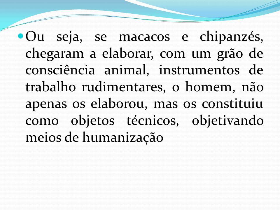 Ou seja, se macacos e chipanzés, chegaram a elaborar, com um grão de consciência animal, instrumentos de trabalho rudimentares, o homem, não apenas os elaborou, mas os constituiu como objetos técnicos, objetivando meios de humanização
